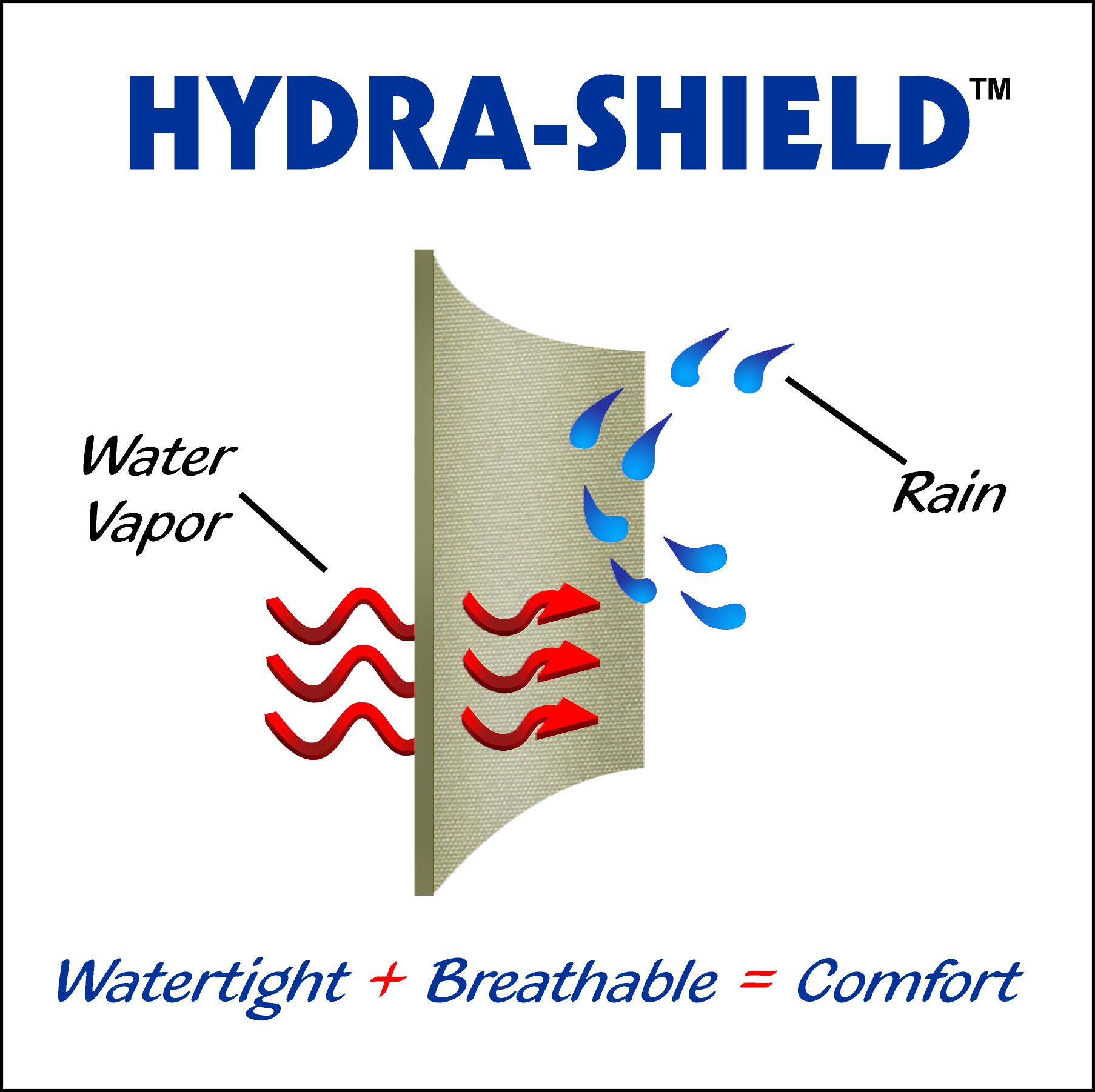 hydra-shield-diagram.jpg